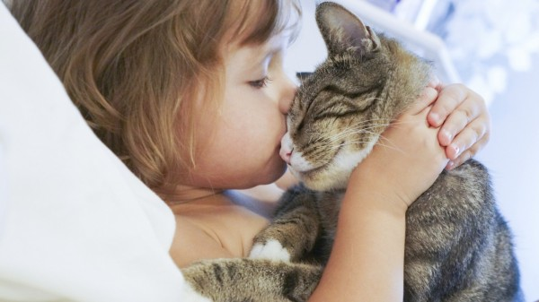 Ребёнок и кошка