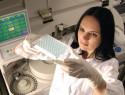 Диагностика гельминтоза, анализы