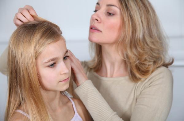 Паразити в волосах человека: как диагностировать и лечить