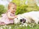 Маленькая девочка и собака